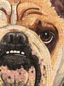 SAMA, MAI, Mosaics, Wasser, dog portrait